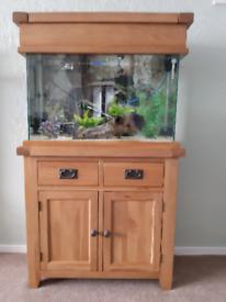 Fish tank and oak cabinet