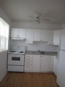 Located in the downtown area ( 2 & 1 Bedrooms - Bachelor)