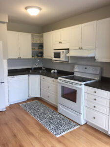 GREAT PRICE! Updated 3 Bedroom Townhouse for Lease July 1