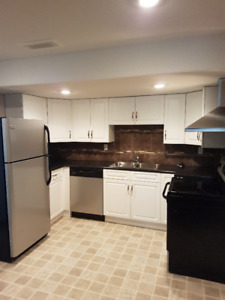 Newer basement suite for rent in Camrose