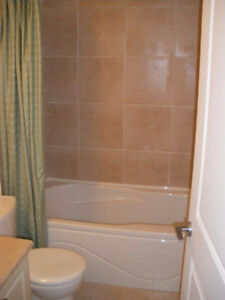 Lougheed/SFU Bachelor basement suite with large separate den