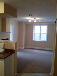 Downtown Barrie bright 2 bedroom apt w/ AC & gas fireplace