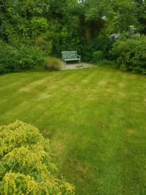 Waste clearance / Garden Maintenance