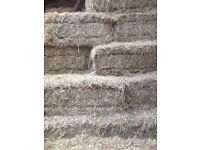 Small square bales of hay for sale! Armagh farm sheep cattle horses shed silage