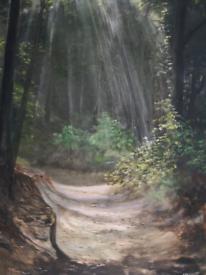 Original Artwork - Woodland walk