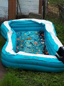 3D kids pool for sale