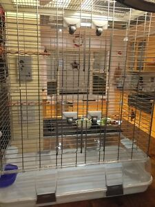Large Vision cage for sale Kitchener / Waterloo Kitchener Area image 3