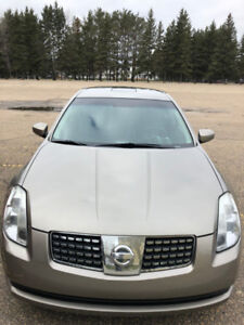 2004 Nissan Maxima for sale.