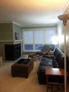 Furnished apartment nr Masonville Mall available short term June