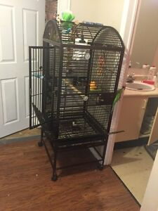 Bird/Parrot cage Large for sale