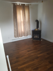 for Jan 1  -1 bedroom house all renovated