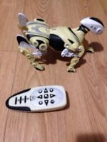 Robot dog with remote