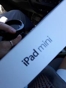 Ipad mini with 2 cases