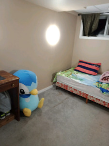 Nice furnished room in basement.