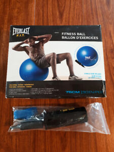 Everlast Fitness Ball with pump