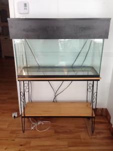 Aquarium + meuble + accessoires