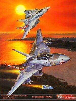 ART PRINT: F-14 Sundowner Tomcats by Stu Shepherd