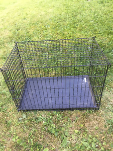Large, collapsible dog kennel