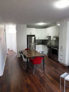Brand New Furnished Amazing! Downtown McGill Ghetto 5 1/2 (3 BR