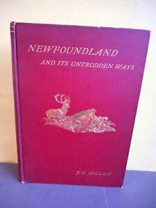 Newfoundland books etc