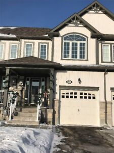 New Freehold Town House for Sale in Shelburne