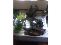 Various fish tank ornaments