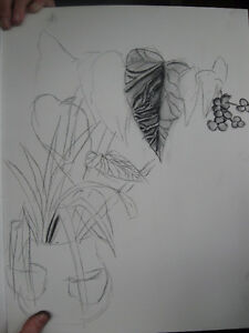 Improve your drawing skills - open to all ages Kingston Kingston Area image 7