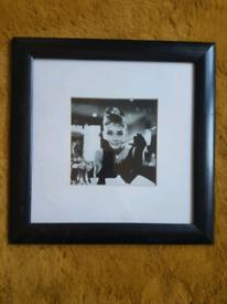Audrey Hepburn framed pictures