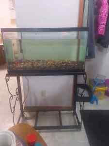 30gl fish tank and stand.