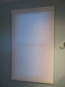 Window Shades (fits most lengths)