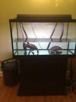 complete 50gallon tank for sale
