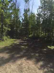 Seasonal RV lots at Halfmoon Lake Resort Strathcona County Edmonton Area image 5