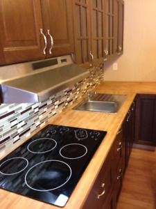 For Rent: Bi-Level condo 5 min to downtown