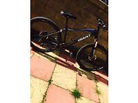 Giant talon 3 mountain bike