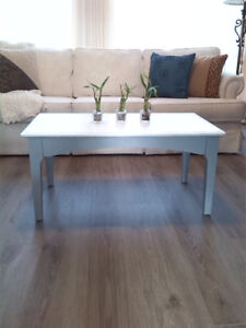 Grey and White Mid-century coffee table with stencil detail
