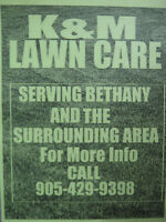 LAWN CUTTING AND GENERAL YARD CLEAN UP