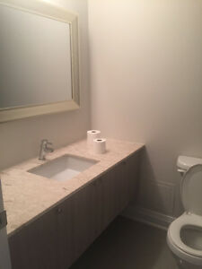 2 Bedroom 2 Full Bathroom Condo for Rent - Martin Grove & Hwy 7