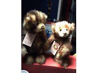 Charle Bears