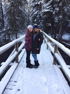 Looking For a room for 2 Aussie Girls in Banff