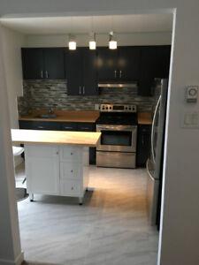 Appartement 2 chambres meublé à louer