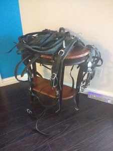 Leather buggy harness