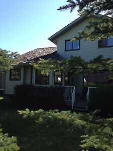 1 bedroom basement suite in Shawnessy
