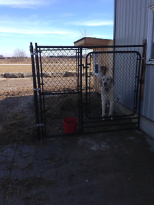 Kennels for sale 10x10 x5 or 6 ft high $450