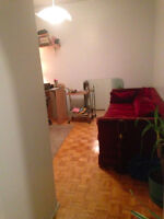 Cheap cozy 4 1/2 (no roommates)in Mile End for DECEMBER move-in.