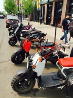 Got a scooter & looking for people to cruise with?