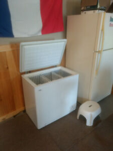 Deep freezer for sale 175$
