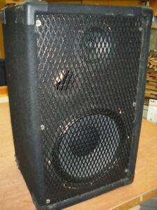 Acoustic Phase Vintage Speaker(1)