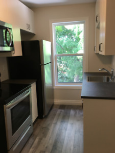 Completely renovated 2 bedroom suite - deluxe downtown living!