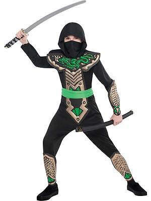 Child Dragon Slayer Ninja Assassin New Fancy Dress Costume Boys Halloween Kids ()