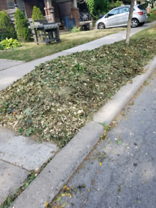 Wood Mulch - *for free* - Danforth East/ Upper Beaches